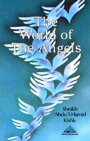 Free Islamic Books on Angels & Jinn (Spirits)